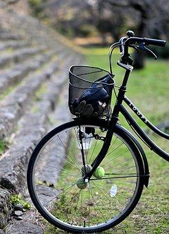 Bike, Park, Landscape, Natural