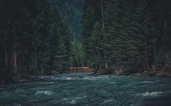 Kumrat Valley, Pakistan, Kumrat, Valley, Nikon, Nature