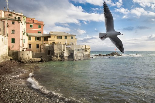 Boccadasse, Borgo, Genoa, Landscape, Sea, Sky, Nature