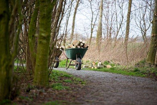 Wheelbarrow, Wood, To Chop Wood, Park, Trees, Firewood