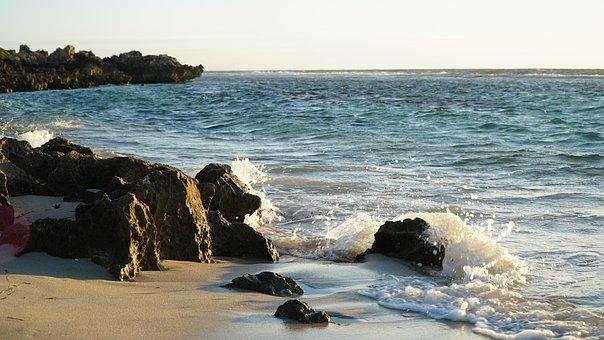 Coast, Rock, Wave, Crash, Splash, Beach, Sea, Water