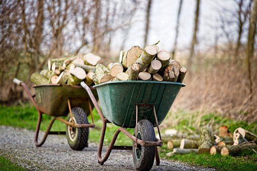 Wheelbarrow, Wood, To Chop Wood, Park