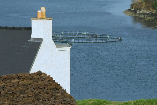 Fish Farm, Loch, Peat, Croft, Blue Farm