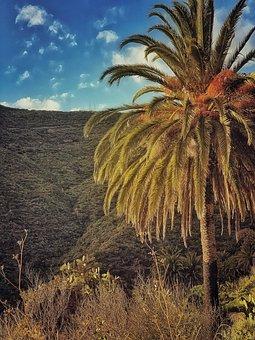 Tenerife, Canary Islands, Ocean, Landscape, Postcard
