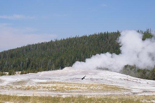 Geyser, Yellowstone, Nature, Hotsprings, Wyoming, Steam