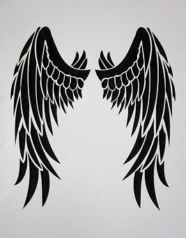 Wing, Black, Feather, Bird, Black Wings, Black Engel