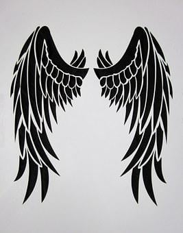 Wing, Black, Feather, Bird, Black Wings, Black Engel