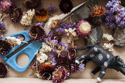 Games, Handicraft Project, Dried Flowers, Creativity