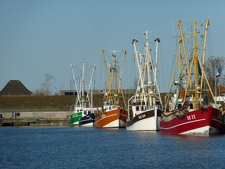 Friedrichskoog Port, Shrimp, Friedrichskoog, Ships