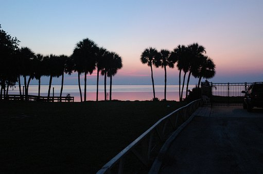 Sunrise, Florida, Coast, South, Travel, Tropical