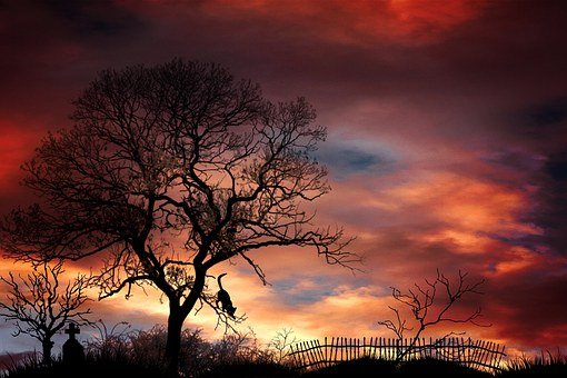 Tombstone, Cemetery, Trees, Mystical, Mood, Landscape