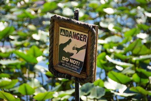 Warning, Warnschild, Shield, Alligator, Everglades