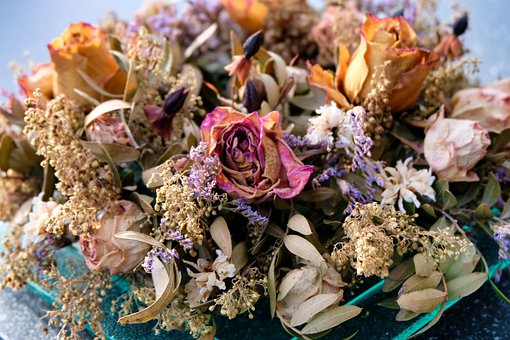 Dried Flowers, Flowers, Blossom, Bloom, Petals