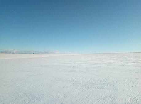 Field, Snow, Sky, Winter, Snowdrift, Frost, Sun, Day