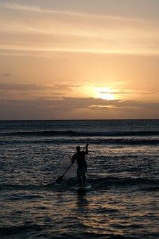 Sunset, Sea, Standup Paddle, Silhouette, Surfer
