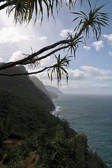 Cliffs, Palm, Coast, Outlook, View, Mountains, Sea