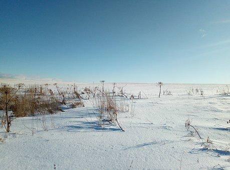 Field, Snow, Sky, Winter, Snowdrift