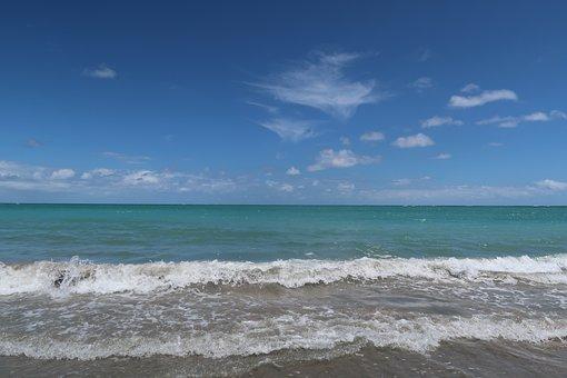 Beach, Brazil, Pernambuco, The Caribbean, Brazilian