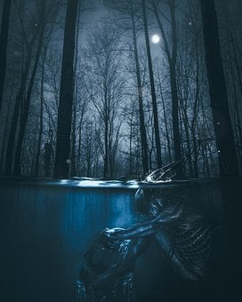 Xenomorph, Foreign, Fear, Spooky, Background, Forest