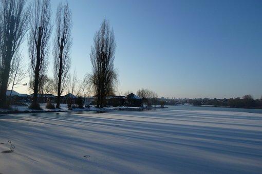 Pond, Vineyard, Winter, Landscape