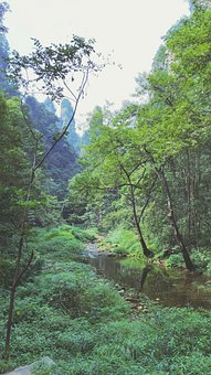 Scenery, Mountains, Green, Trees, Travel, Sunny, Rivers