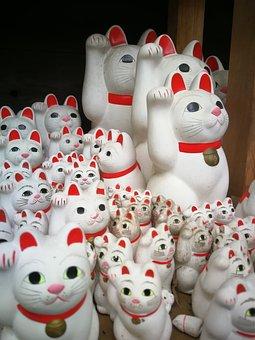 Japan, Vacations, Travel, Tokyo, Cat, Temple, Porcelain