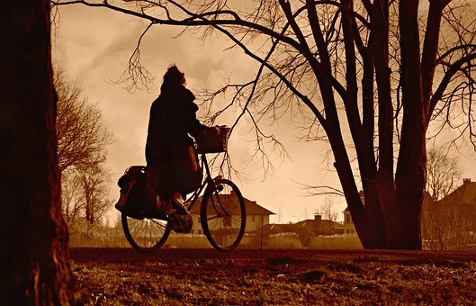 Cyclist, Cycling, Bicycle, Vehicle