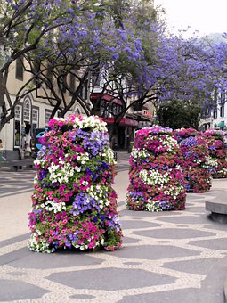 Flowers, Display, Street, Tower