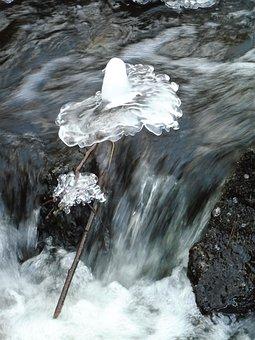Landscape, Prague, Stream, Winter, Dancer, Water, Ice