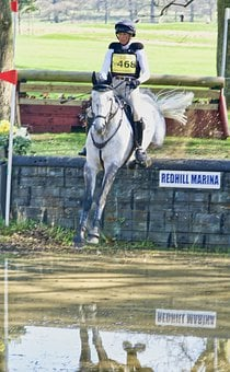 Jump, Horse, Water, Competition, Equestrian, Sport