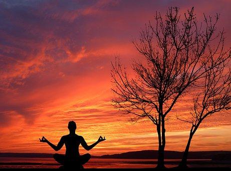 Sunset, Nature, Tree, Yoga, Relaxation