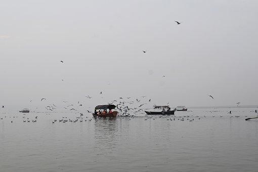 Boat, Pragraj, Ganga, Ganges, River, Water, Nature