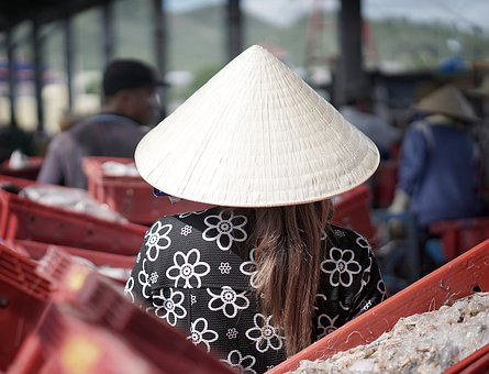 Vietnam, Asia, Fish Market, Woman, Travel, Food, Hat