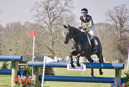 Jump, Rider, Obstacle, Crosscountry, Event, Belton