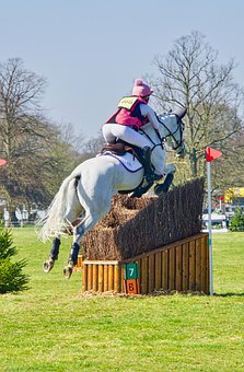 Showjumping, Horse, Equestrian, Competition, Event