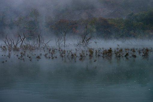 Mist, Water, Autumn, Fog, Landscape
