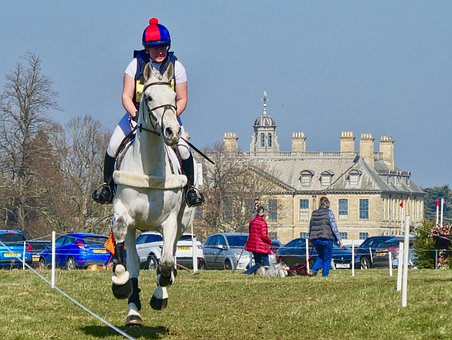 Crosscountry, Event, Belton, Horse, Trail, Competition