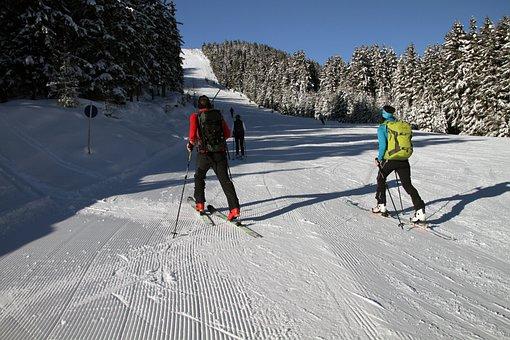 Slope, Snow, Ski, Walking, Mountains, Snowboarding