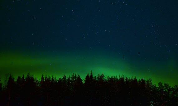 Aurora, Polar Lights, Sky, Stars, Night, Forest, Dark