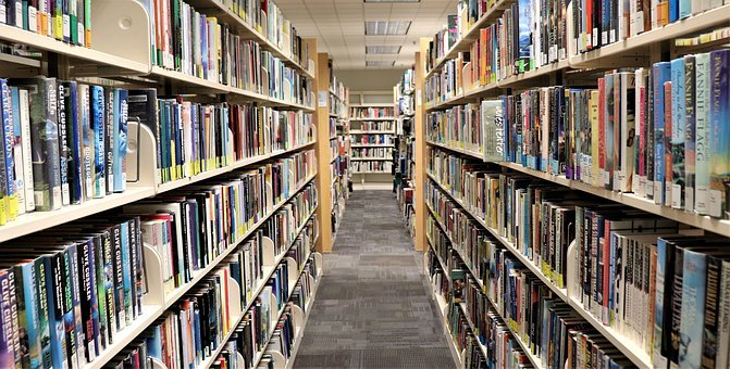 Library, Books, Shelves, Shelving, Shelf, Literature