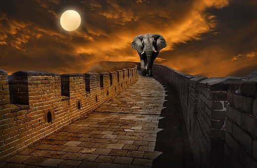 Puente, Atardecer, Elefante, Sol, Sunset