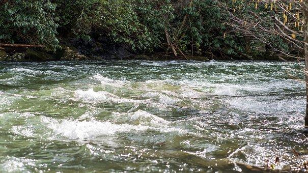 River, Creek, Stream, Water, Nature