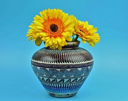 Daisy, Gerbera, Asteraceae, Flower, Floral, Colorful