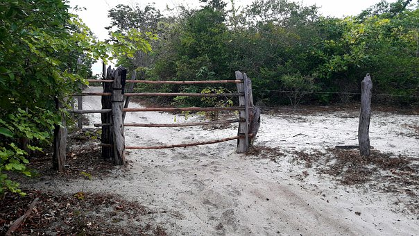 Gate, Concierge, Wood