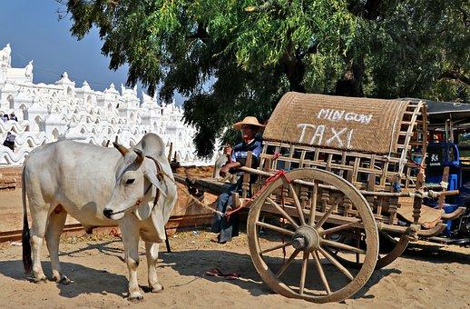 Cart Taxi, Pagoda, Mya Thein Tan, Burma, Mingun