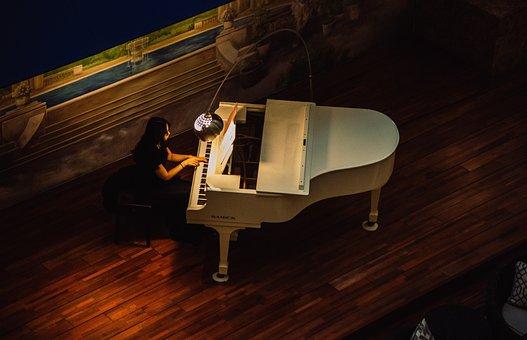 Wing, Piano, Pianist, Music, Salon