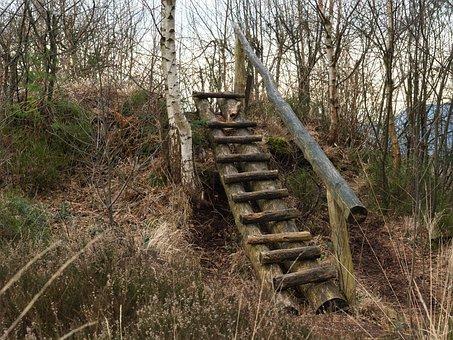Wood, Head, Stairs, Rise, Rustic, Nature, Quaint