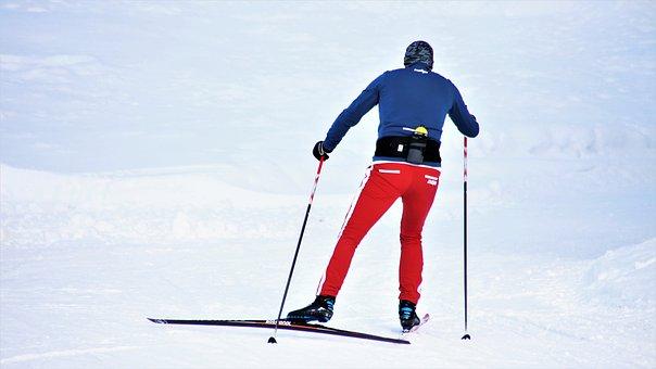 Skier, Snow, Active, Ski, White, Skiing, Sports, Alpine