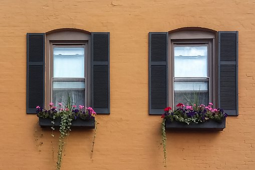 Windows, Shutters, Old, Vintage, Wood, Curtains, Shades