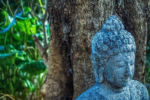 Buddha, Yoga, Meditation, Zen
